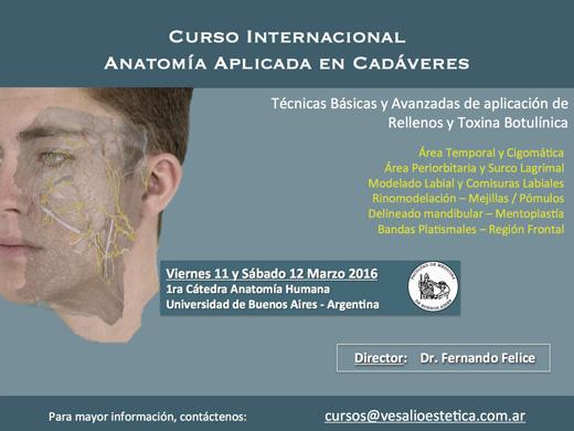 Curso internacional: Anatomía aplicada en cadáveres. Botox y rellenos